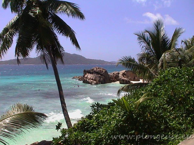 Anse-Patate-La-digue.jpg