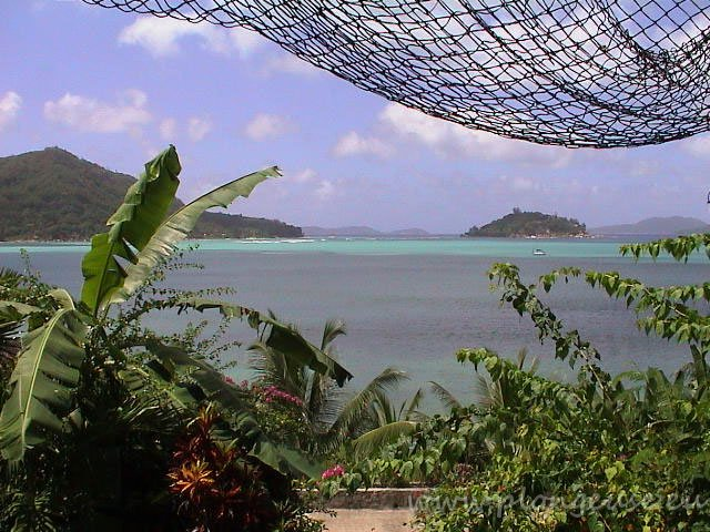 Colibri-Praslin-4.jpg