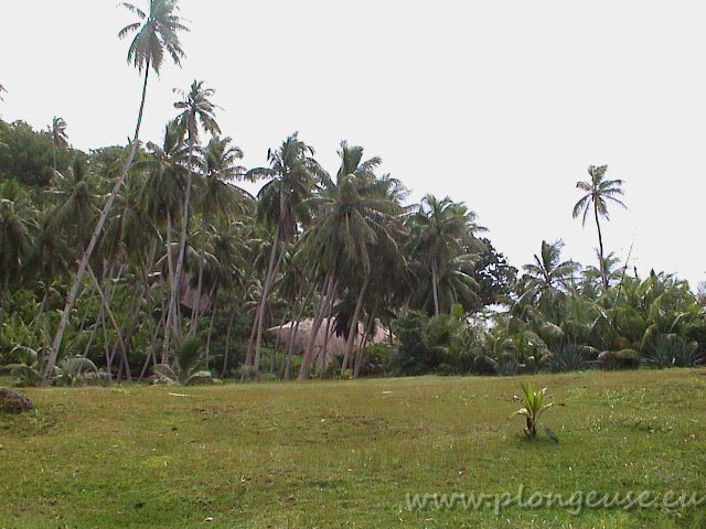 Seychelles-2.jpg
