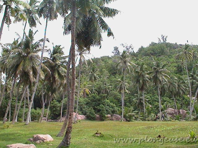 Seychelles-3.jpg