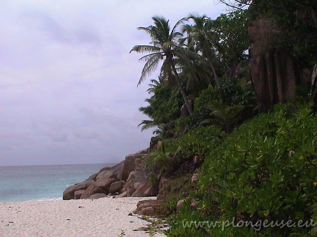 Seychelles-4.jpg